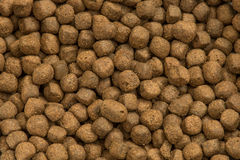 Pet food. Close up pet food in a dish Royalty Free Stock Photography
