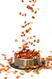 Pet food Royalty Free Stock Images
