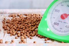 Pet food and green weighting scale Stock Photography