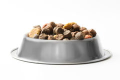 Pet food in silver bowl Royalty Free Stock Image