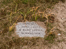 Pet graveyard Royalty Free Stock Images