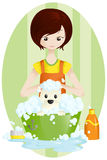 Pet groomer. A vector illustration of a pet groomer Royalty Free Stock Photo