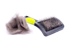 Pet grooming brush Royalty Free Stock Photos