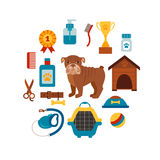 Pet grooming concept with dog care elements. Pet grooming:bowl, collar, leash. Pet grooming poster vector illustration. Colorful Pet grooming concept in flat royalty free illustration