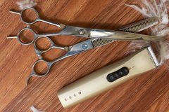 Pet grooming tools, wooden background. Royalty Free Stock Photography