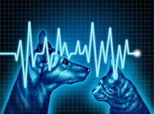 Pet Health Care. And medical insurance for pets concept as an illustration of a dog and cat with an ecg or ekg monitor lifeline as a veterinary symbol and Stock Photos