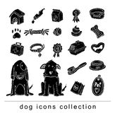 Pet icons doodle set, vector illustration. black color Royalty Free Stock Photo