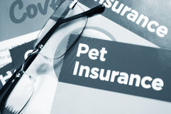 Pet insurance Royalty Free Stock Photos