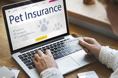 Pet Insurance Care Guarantee Concept. Pet Insurance Care Guarantee Information Concept Stock Photography