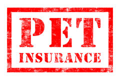 Pet Insurance rubber stamp. In red ink with white background Royalty Free Stock Image