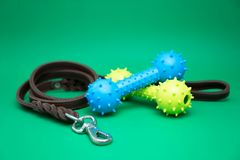 Pet leashes with rubber toy and pet supplies for dog or cat concept stock photography
