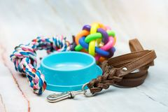 Pet leather leashes, brush and rubber toys. Pet supplies concept. Pet leather leashes, brush and rubber toy royalty free stock photo