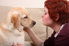Pet Love. A woman caressing her pet labrador Royalty Free Stock Images