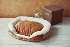 Pet mattress with box and lantern Royalty Free Stock Photo