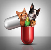 Pet Medicine. And animal prescription drugs as veterinary pharmaceutical therapy and vet medical concept as a giant pill with a dog cat hamster and bird Royalty Free Stock Photography