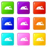 Pet mouse icons 9 set Royalty Free Stock Image