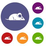 Pet mouse icons set Royalty Free Stock Photo