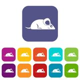 Pet mouse icons set flat Royalty Free Stock Photos