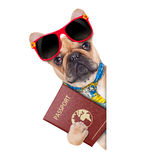 Pet passport Royalty Free Stock Photos