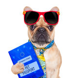 Pet passport Stock Images