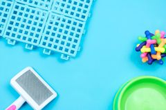 Pet Plastic flooring for pet with accessories on blue background royalty free stock photos