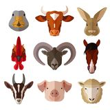 Pet Portrait Flat Icon Set. With cow goose pig goat isolated vector illustration Stock Images