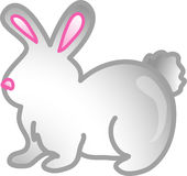 Pet rabbit icon or symbol Royalty Free Stock Images