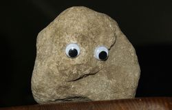 Pet Rock Stock Photos