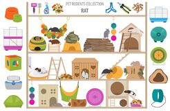 Pet rodents home accessories icon set flat style isolated on white. Healthcare collection. Create own infographic about guinea pig royalty free stock photo