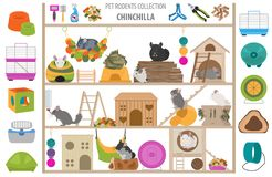 Pet rodents home accessories icon set flat style isolated on white. Healthcare collection. Create own infographic about guinea pig royalty free stock photography