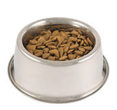 Pet S Dog Metal Bowl Isolated Stock Images