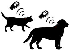 Pet's microchip. Microchip for pets,cats and dogs royalty free illustration