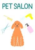 Pet salon Stock Images