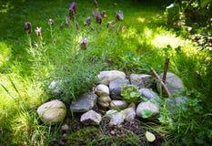 Pet a sepultura decorada com pedras e ramifique cruz Imagens de Stock