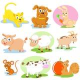Pet set. The Animal pet cartoon  set Royalty Free Stock Images