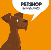 Pet shop brown doggy and bubble speech design graphic Royalty Free Stock Photography