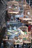 Pet shop Royalty Free Stock Photos