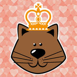 Pet shop Royalty Free Stock Photo
