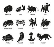 Pet shop, set silhouette types of pets royalty free illustration
