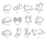 Pet shop, set types of pets. Cartoon illustrations animals in line style. Logo, pictogram, infographic elements Royalty Free Stock Photography