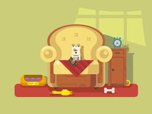 Pet sitting in chair. Armchair sitting dog, bone and friend, flat vector illustration Royalty Free Stock Photography