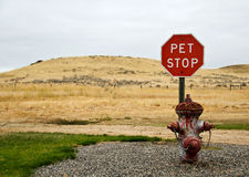 Pet Stop Stock Photography