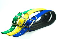 Pet supplies about collars for dog or cat.
