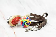 Pet leather leashes, brush and rubber toy. Pet supplies concept. Pet leather leashes, brush and rubber toy set stock photography