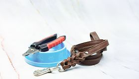 Pet supplies concept. Pet leather leashes and Nail scissors. stock photography