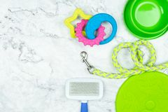 Pet supplies with copy space concept stock photo