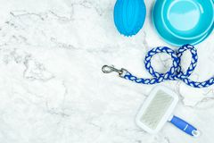 Pet supplies with copy space concept royalty free stock photo