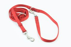 Pet supplies about leash of red for pets isolated on white backg Stock Photos