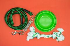 Pet supplies set about bowl, rope and leash on red background. Green concept royalty free stock photos