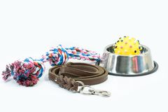 Pet supplies set about stainless bowl, rope, rubber toys stock photography